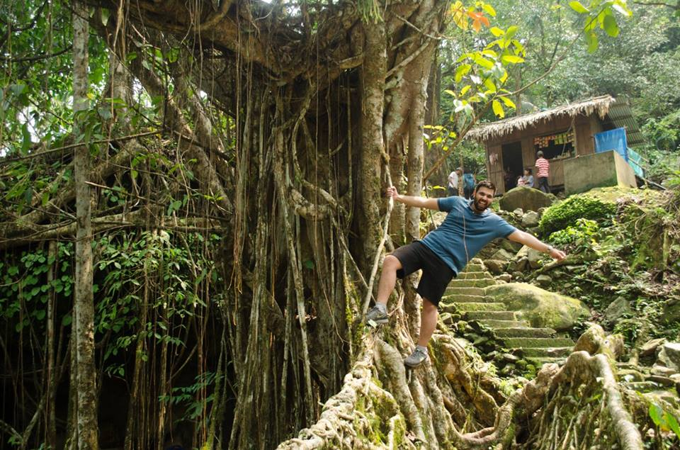 Living Roots bridge Meghalaya