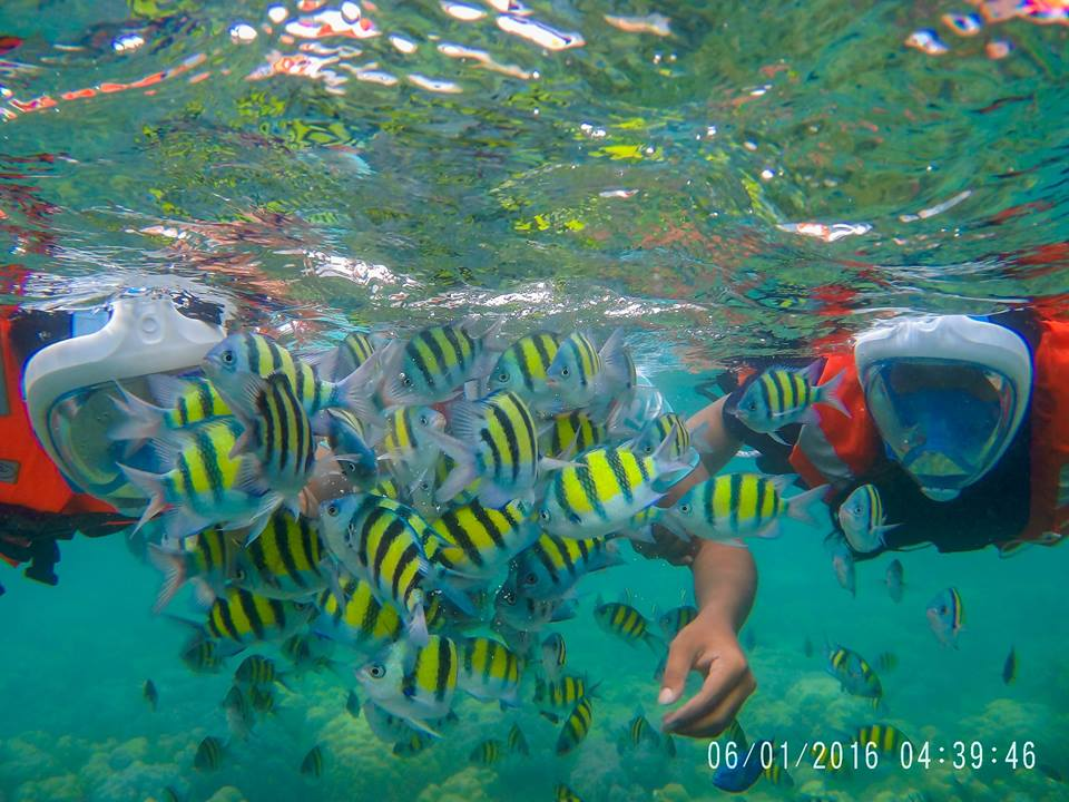 Under water diving