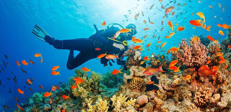 Things to do in Andamans