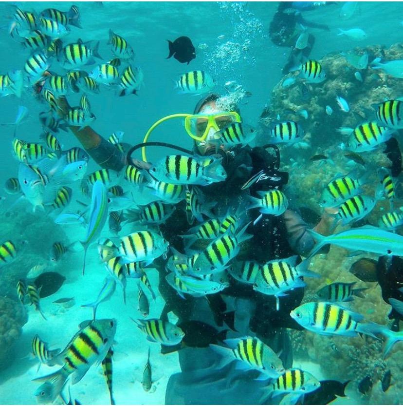 best scuba diving in india