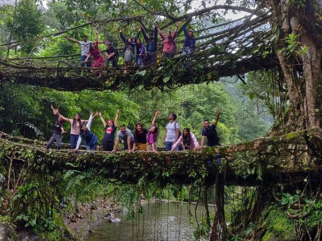 Living Roots Bridges