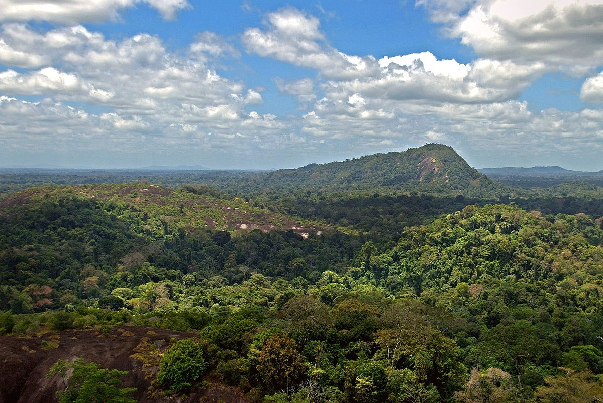 Suriname Nature Reserve