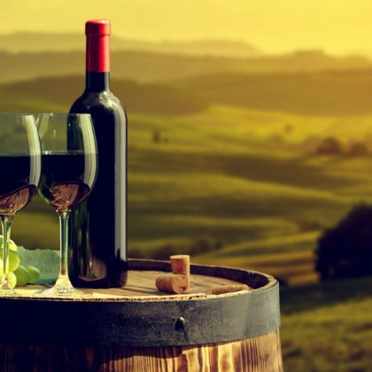 Best Wine Producing Countries In The World