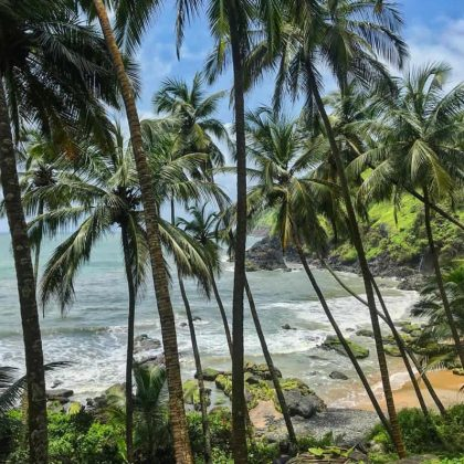 things to do in agonda