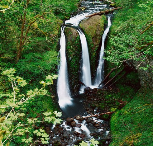 waterfalls in nagaland